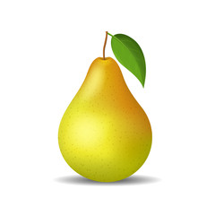 Realistic Detailed 3d Whole Pear Isolated on a White Background. Vector
