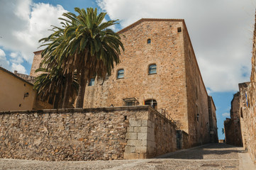 Cobblestone alley with stone wall, old building and palm tree at Caceres