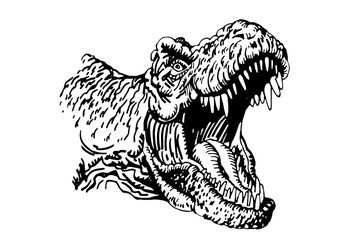Graphical portrait of tyrannosaurus isolated on white ,vector illustration