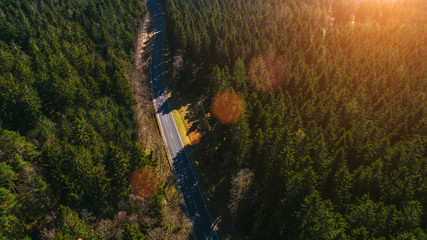 Wall Mural - aerial top view on mountain forest road on a beautiful summer day