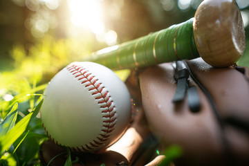 Baseballs, baseball gloves, baseball bats resting on the lawn with the warm light of the setting sun