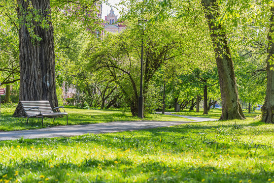 Fresh green grass field and walking path in outdoor park
