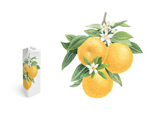 Orange branch with fruits and flowers hand draw illustration