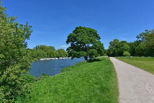Spring Walk along the Thames on the Path Near Richmond