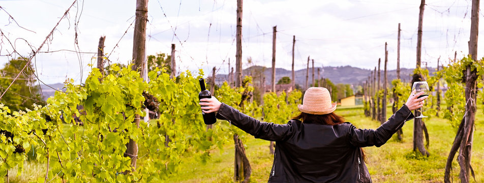 Girl with a glass of red wine in hand and a bottle. Girl in the vineyards at sunset. Long format. Banner.