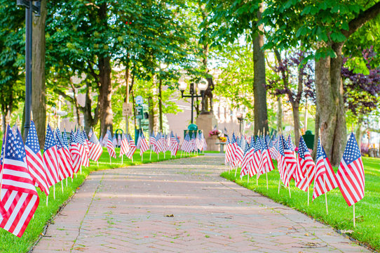 American flags spread on lawn of public park as part of Memorial Day celebration.