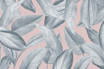 Tropical foliage background Wall mural
