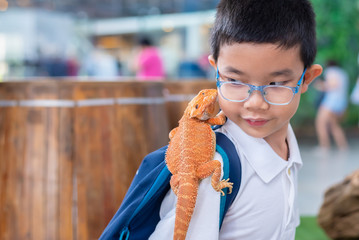 boy hold Bearded Dragon on shoulder. Wall mural