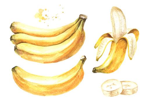 Fresh ripe yellow banana elements set. Watercolor hand drawn illustration, isolated on white background