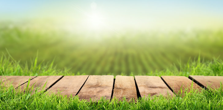 A wooden table with a sunny summers farmland background