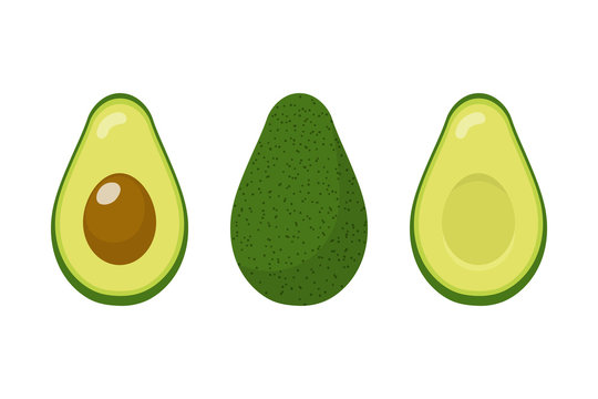 Set of fresh whole and half avocado isolated on white background. Organic food. Cartoon style. Vector illustration for design.