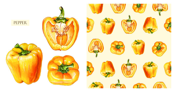 Yellow bell pepper isolated on white background. Watercolor seamless pattern of vegetables, raw yellow pepper. Hand-drawn healthy food.
