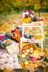 Autumn guitar camera flowers