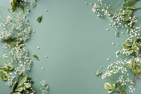 Small white gypsophila flowers on pastel green background. Women's Day, Mother's Day, Valentine's Day, Wedding concept. Flat lay. Top view. Copy space