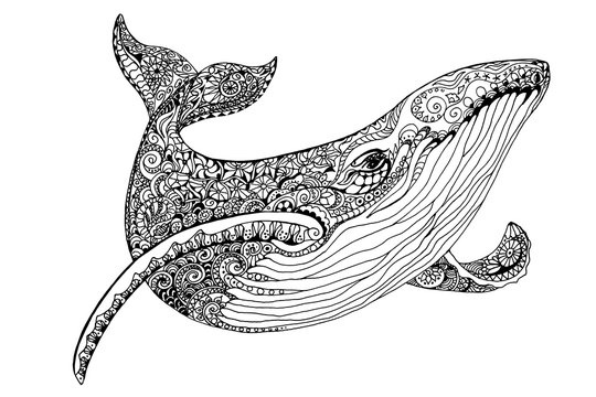 Illustration Whale for adult anti stress coloring pages. Ornamental tribal patterned illustration for tattoo, poster or print. Hand drawn monochrome sketch. Sea animal collection.