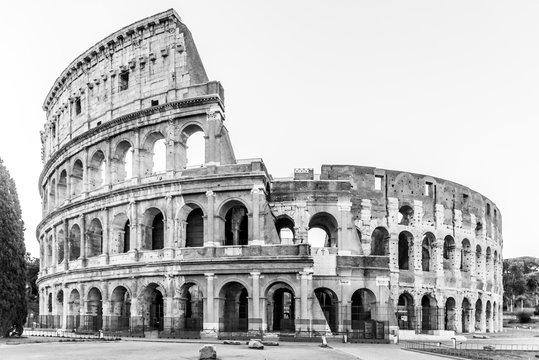 Colosseum, or Coliseum. Morning sunrise at huge Roman amphitheatre, Rome, Italy.
