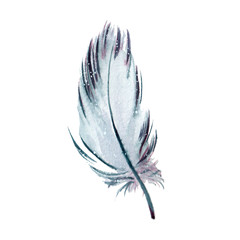 Hand drawn watercolor feather