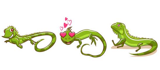 iguana vector set graphic design