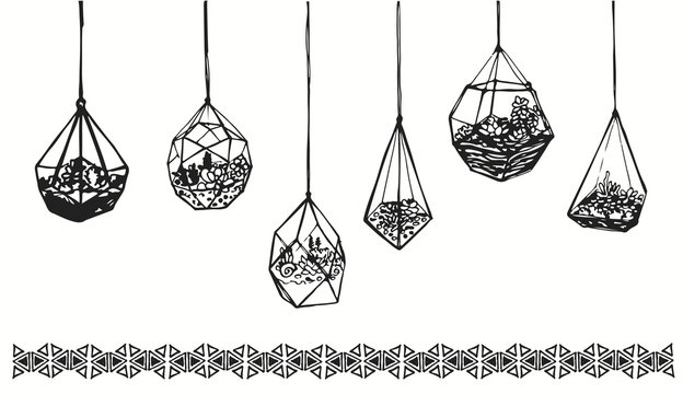 Drawing hanging glass terrariums with plants and succulents. Hand drawn wardian case and florariums sketch for interior or decoration.