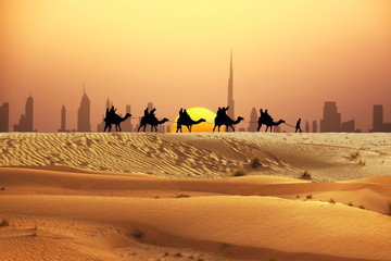 Dubai skyline at horizon with camel ride caravan silhouette in desert