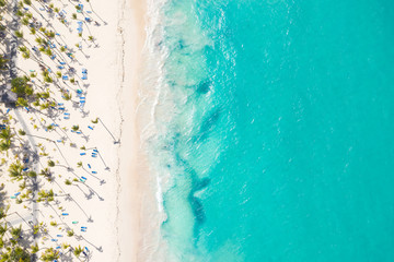 Aerial view from drone on caribbean seashore with coconut palm trees and sunbeds. Summer holidays