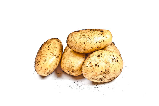 Newly harvested dirty potatoes heap isolated on white background.