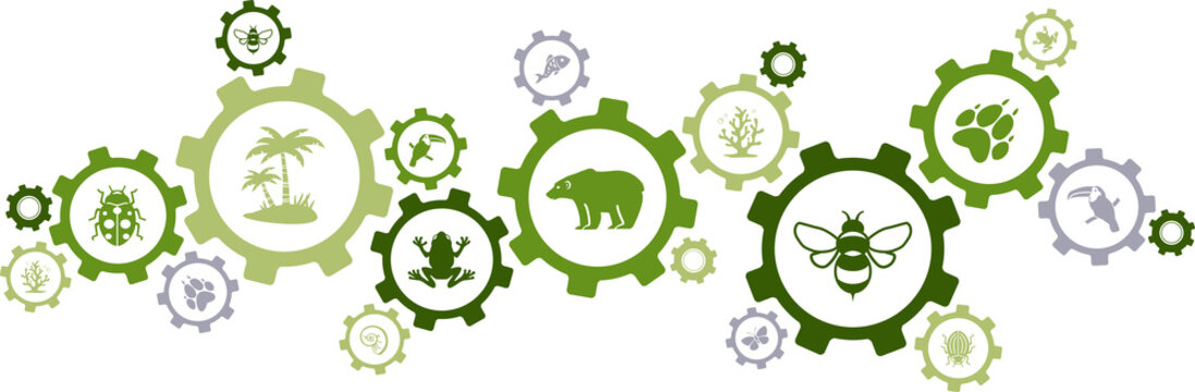 biodiversity icon concept – endangered species & wildlife icons, vector illustration