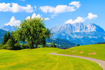 Wall Mural - Green golf course area against mountains background on sunny summer day, Kitzbuhel, Tyrol, Austria