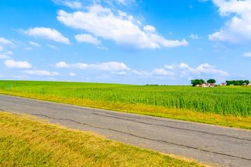 Fototapete - Rural road and green fields in spring landscape of Burgerland near Strem village, Austria
