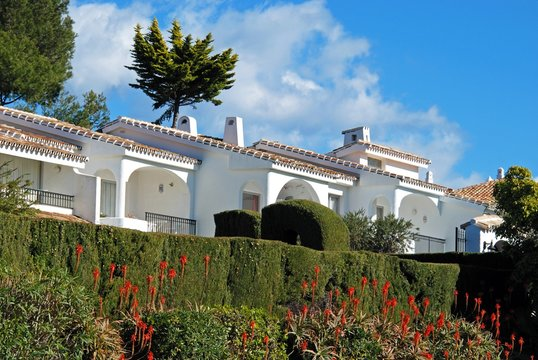 Townhouses with Aloe Arborescens Variegata plants in the foreground, Miraflores, Spain.