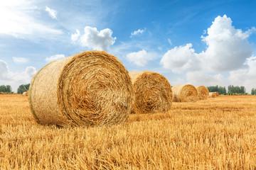 Fototapeta Straw bales on farmland with blue cloudy sky obraz