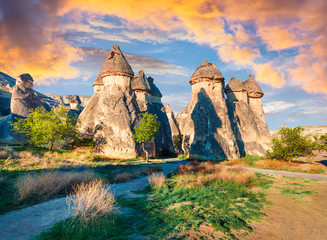Magic fungous forms of sandstone in the canyon near Cavusin village, Cappadocia, Nevsehir Province in the Central Anatolia Region of Turkey, Asia. Beauty of nature concept background. Wall mural