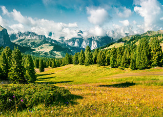 Wall Mural - Wonderful summer scene with Furchetta mountain range in the morning mist. View Great view of Dolomite Alps from Sella pass, Italy, Europe. Beauty of nature concept background.