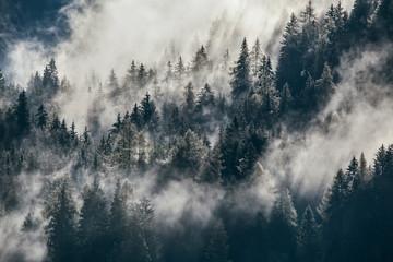 Dense morning fog in alpine landscape