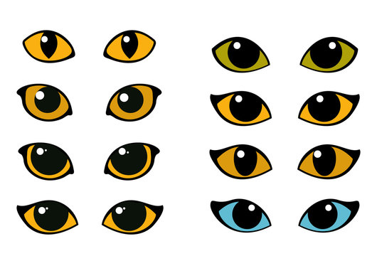 Cat and wild animals eye vector set