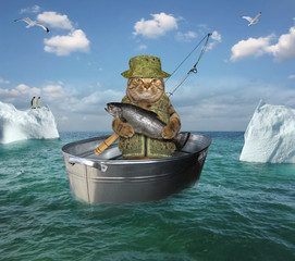The cat fisherman in uniform with a fishing rod is drifting in the steel wash tub among the icebergs in the high seas. He holds a big salmon.
