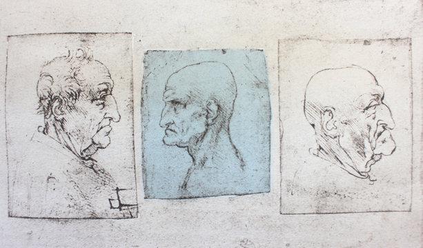 Caricatures of different people by Leonardo Da Vinci in the vintage book Disegni di Leonardo by L. Beltrami, Milan, 1904