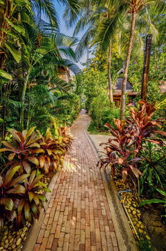 Tropical gardens around a swimming pool in Pattaya, Thailand