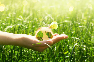 Earth glass globe and butterfly with yellow wings in human hand on green grass background. Saving environment concept.