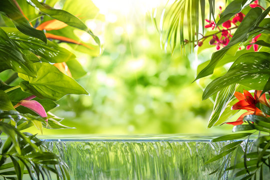 Tropical palm leaves,flower and small waterfall