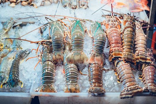 Fresh lobster in the street food shop in Phuket