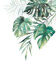 Watercolor tropical leaves poster. Hand painted exotic monstera and palm green branches composition on white background. Summer plants illustration