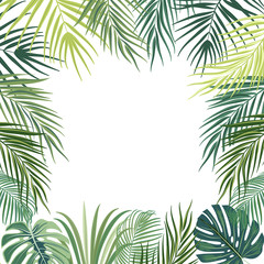 Vector tropical jungle frame with palm trees, flowers and leaves on white background