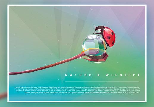 Geometric Natural Illustration Poster Layout with Ladybug