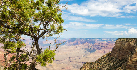 Grand Canyon panoramic view during a sunny cloudy day