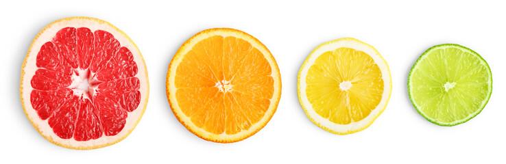 Wall Mural - Lime, grapefruit, orange and lemon slices