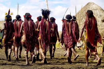 Obraz dani people during tribe festival in wamena-baliem valley-papuasia-indonesia - fototapety do salonu