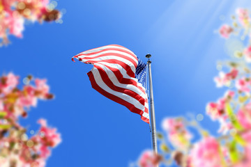close up waving American flag and flowers over blue clear sky