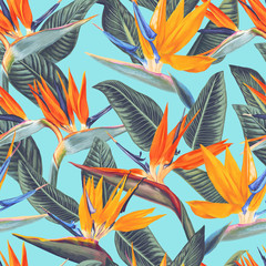 ,Seamless pattern with tropical flowers and leaves of Strelitzia Reginae. Realistic style, hand drawn, vector, bright colours. Background for prints, fabric, wallpapers, wrapping paper.