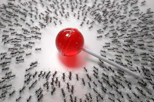 hordes of hungry ants attack lollipop